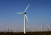 Wind is one of the largest renewable power source in the region