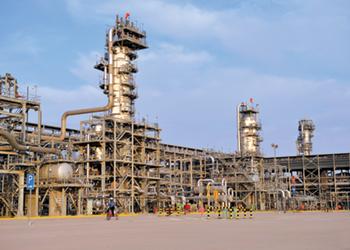 The Hawiyah plant