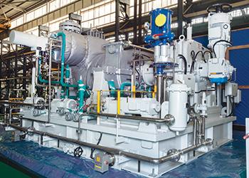 Triveni Turbines units ... reliable and efficient